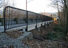 Commercial handrail SR 9 Pedestrian Improvement